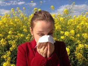 Hooikoorts ziekte